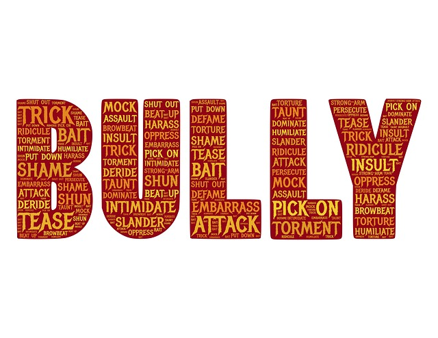 Bullying in Islam post with word block carrying words describing 'bully'